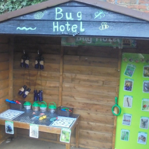 The World of Bugs and Birds at Children 1st @ Newark Town
