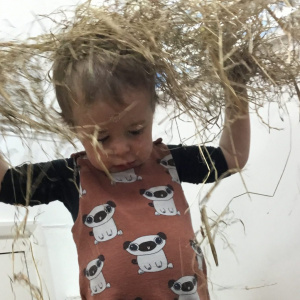 Harvest Day Fun at Children 1st @ Sheffield