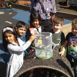 Learning about Life Cycles and Growing at Children 1st @ Birstall