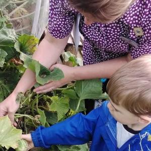 Growing Vegetables at Children 1st @ Acorns!